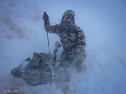 Hunting Kyrgyzstan Ibex Pedro Ampuero