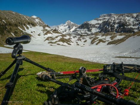 Bowhunting Chamois Pyrenees Pedro Ampuero