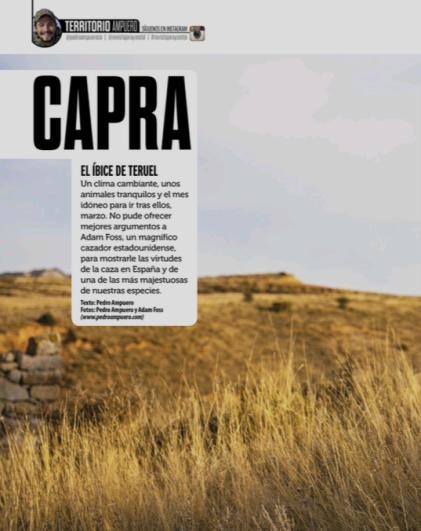 Capra JyS MArch 2015 1