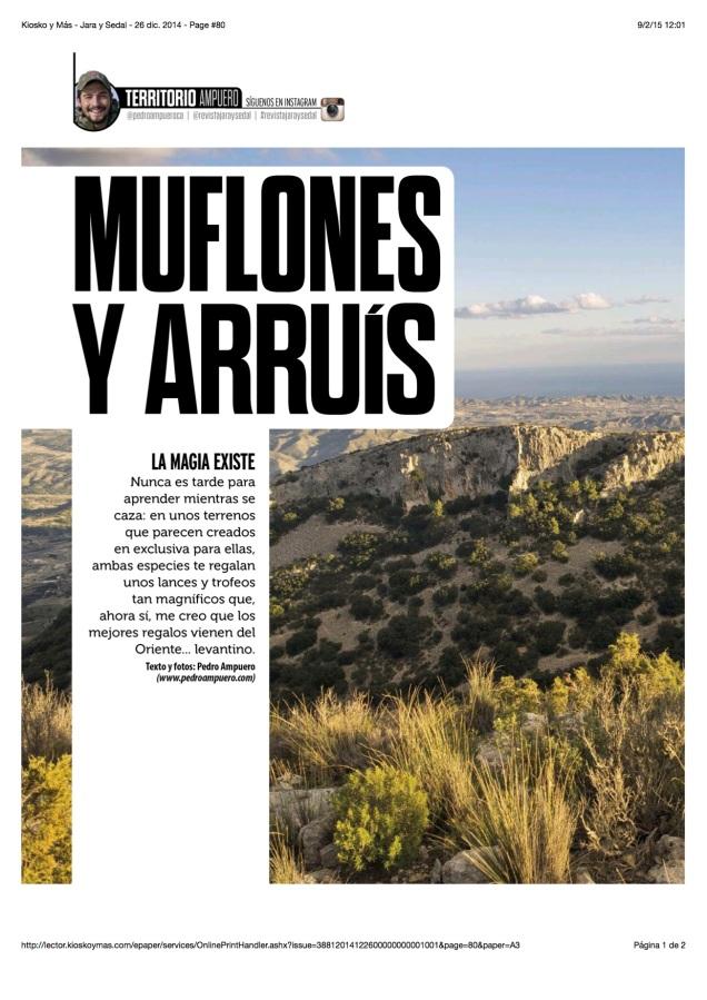 JYS Jan 2015 - Arruis 2
